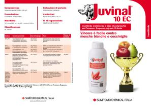 Folder Juvinal 10EC